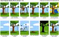 نحوه انجام پروژه ها در صنعت نرم افزار!!