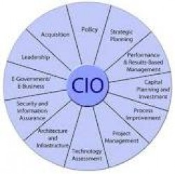 مسوولیتهای اصلی CIO کدامند؟