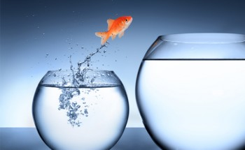 نرم افزار crm و ترس از تغییرات