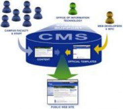 انواع سیستم مدیریت محتوا (CMS) ،مزایا و معایب آن چیست؟