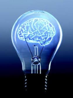 رهبران سازمانی موفق، هوش «اجتماعی-هیجانی» خود را پرورش میدهند