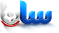 پیاده سازی نرم افزار CRM در گروه صنعتی سانا عایق